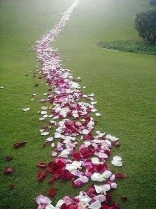 drum de flori